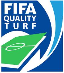 Reconocido por FIFA